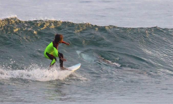 170126-shark-australia-surfer-1232p_5ce852525c6967297c6b4d7e99ffd8e3-nbcnews-ux-2880-1000