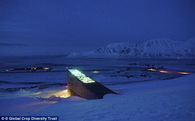 3EB6262D00000578-4357644-The_vault_which_is_called_the_World_Arctic_Archive_is_based_in_S-a-2_1490720074546.jpg